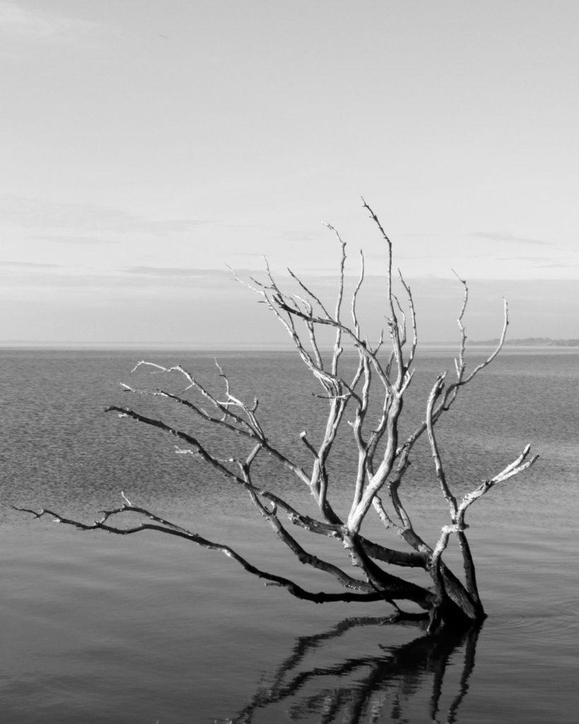 Mackay Island North Carolina